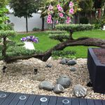 aménagement et entretien des jardins à Marrakech || development and maintenance of gardens in Marrakech