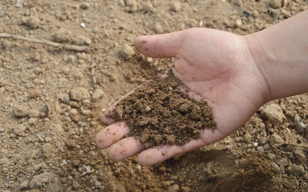 Livraison de la terre végétale à Marrakech || Soil delivery to Marrakech