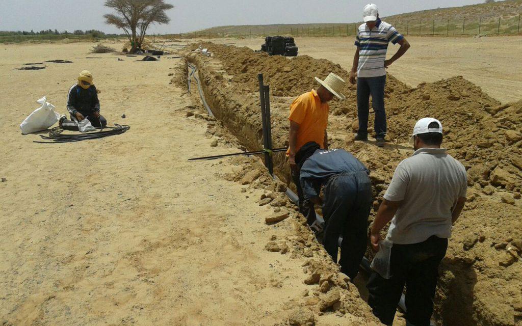 étude et installations des systèmes d'irrigation à Marrakech || study and installation of irrigation systems in Marrakech