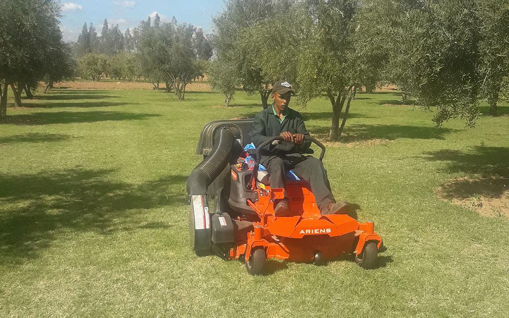 Tonte du gazon et location tondeuse à Marrakech || Lawn mowing and mower hire in Marrakech